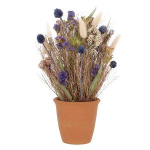 Composition de Fleurs Séchées Coloris Chardon